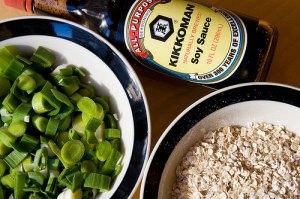 20090127-oatmeal11